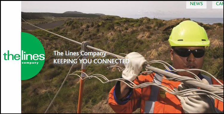 The Lines Company's pricing review suggests lessons for distribution pricing going forward image
