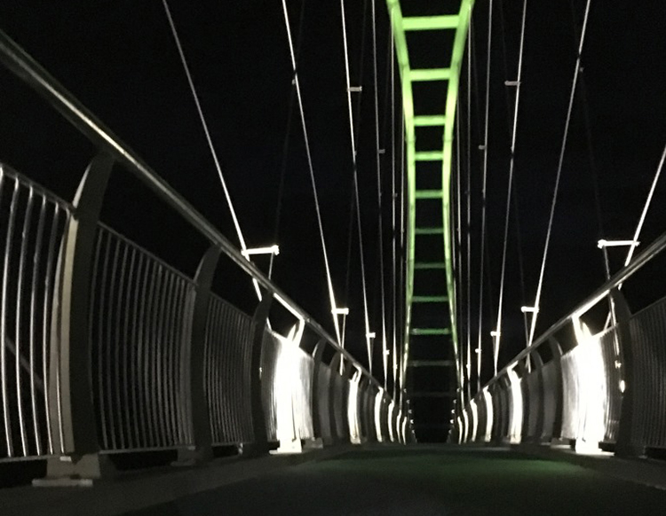 WEL Networks goes off grid to light up Te Awa Cycleway bridge image